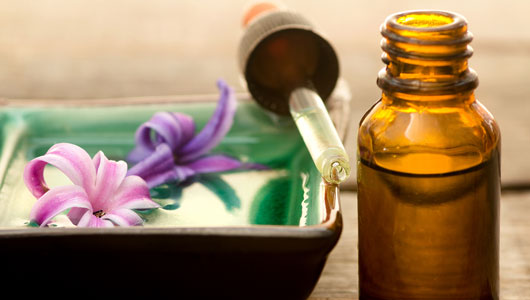 Flower Essences in Vibrational Medicine